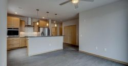 622 W. Wilson St. #515 – 1 month free rent special*